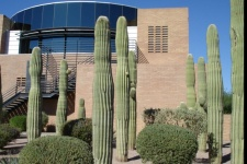 Gilbert Arizona Rentals